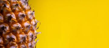 Makro- strzelanina W górę krawędzi dojrzały ananas Długi żółty sztandar kosmos kopii Szablon dla projekta soki od zdjęcia royalty free