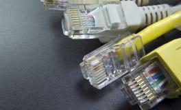 Makro Verbinder des Netzes einige RJ45 Lizenzfreie Stockfotografie