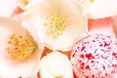Makro weiße Blumen und Ei auf rosa Kuchen Lizenzfreie Stockfotos