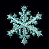 Makro weißer Hintergrund der natürlichen Kristallschneeflocke Stockfoto