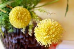 Makro- widok żółty kwiat Obrazy Royalty Free