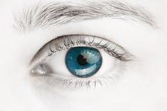 Makro- wizerunek niebieskie oko Obrazy Stock