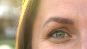 Makro- zakończenia oka mruganie zbiory wideo