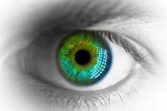 Makro- zielonego oka zakończenie w górę czarny i biały i koloru Obrazy Stock