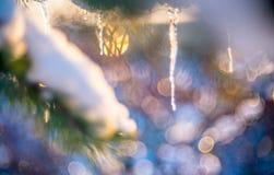makro- zimy natura Obrazy Stock
