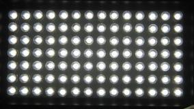 Makro- zoom dioda panel Rzeczywisty zdobycz zbiory wideo