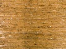 Makrobeschaffenheit - Holz - Korn Lizenzfreies Stockfoto