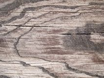 Makrobeschaffenheit - Holz - Korn Stockbilder