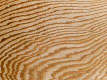 Makrobeschaffenheit - Holz - Korn Stockfoto