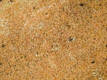 Makrobeschaffenheit - Stein - gesprenkelt Stockfoto