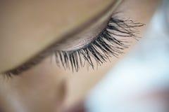 Makrobild av långa lockiga ögonfrans Royaltyfri Foto