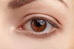 Makrobild des menschlichen Auges Stockbilder