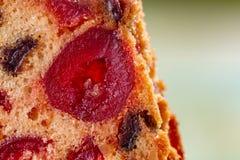 Makrobild einer Kuchenscheibe mit Fr?chten Fruchtkuchen mit Rosine und Trauben lizenzfreie stockfotografie
