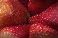 Makrobild von Erdbeeren Stockfoto