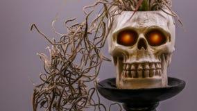 Makrobild von Halloween-Schädel mit roten Augen Stockbild