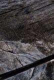 Makrobilden av en del av en ektabell med ett stort gnarl delat av ett tomt utrymme Arkivfoto
