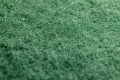Makrobilden av en gräsplan skurar svampen arkivfoto