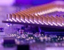 Makrocpu-Stifte in der blauen Diodenleuchte Stockfotografie