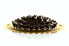 Makroen av Ferrofluid på vit ytbehandlar Royaltyfri Fotografi