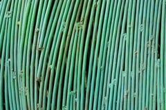 makroen för fältet för djup för abstrakt begreppstänger förstärker den konkreta grunt stål för stänger till använt Grön färg för  Arkivfoton