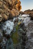 Makroen saltar kanjonen i Big Sur arkivbilder
