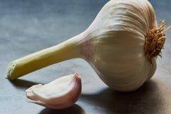 makrofärgfoto av vitlök på ett grått kökskrivbord royaltyfri fotografi
