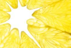 Makrofoto av citronen Arkivfoton