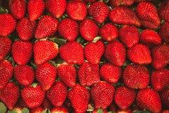 Makrofoto av många oavkortad ram för jordgubbar Arkivfoto