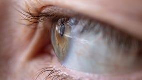 Makrofoto des weiblichen Auges mit den Wimpern stockfoto