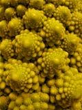 Makrofoto mit einem natürlichen frischen Produkt des hellen Hintergrundes in Form von dekorativem Kohl Lizenzfreies Stockfoto