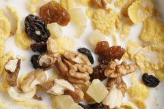Makrofoto von Corn Flakes mit Früchten und Nüssen in der Schüssel Lizenzfreie Stockfotografie