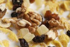Makrofoto von Corn Flakes mit Früchten und Nüssen in der Schüssel Lizenzfreie Stockbilder