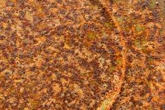 Makrogroßaufnahme verrostete altes Tin Can Metal Oxidation lizenzfreie stockbilder