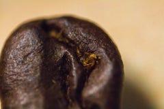 Makrohintergrund des kaffeebohne-freien Raumes lizenzfreies stockbild
