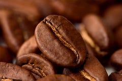 Makrokaffeebohnen Lizenzfreies Stockfoto