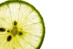 Makrolimefrukt på vit Rum för text royaltyfri fotografi