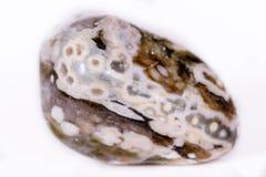 Makromineralsteinjaspis ozeanisch auf einem weißen Hintergrund lizenzfreies stockbild