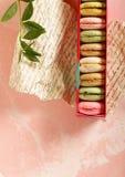 Makronen, französischer traditioneller Nachtisch lizenzfreies stockbild