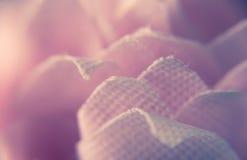 Makrophotographie des rosa Baumwollgewebes lizenzfreie stockbilder