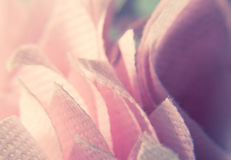 Makrophotographie des rosa Baumwollgewebes stockfoto