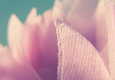 Makrophotographie des rosa Baumwollgewebes stockbild