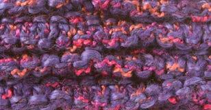 makropurplescarf Royaltyfri Foto