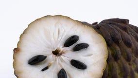 Makroschießen der Cherimoyafruchtmasse mit den Samen Zwei Hälften der reifen Annonafrucht Langsam, drehend auf stock video