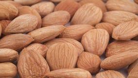Makroschießen von Aprikosenkernen häufen Langsam, drehend auf die Drehscheibe lokalisiert auf dem weißen Hintergrund Volles Feld stock video footage