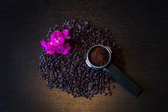 Makroschuß der Kaffeebohnen Lizenzfreies Stockfoto