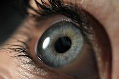 Makroschuß des Auges Stockbilder
