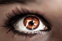 Makroschuß des Auges der bernsteinfarbigen Frau Lizenzfreies Stockbild