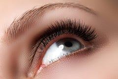 Makroschuß des schönen Auges der Frau mit den extrem langen Wimpern Lizenzfreies Stockbild