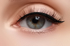 Makroschuß des schönen Auges der Frau mit den extrem langen Wimpern Sexy Ansicht, sinnlicher Blick Weibliches Auge mit den langen Stockfotos