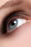 Makroschuß des schönen Auges der Frau mit extrem langem eyelashe Stockbilder